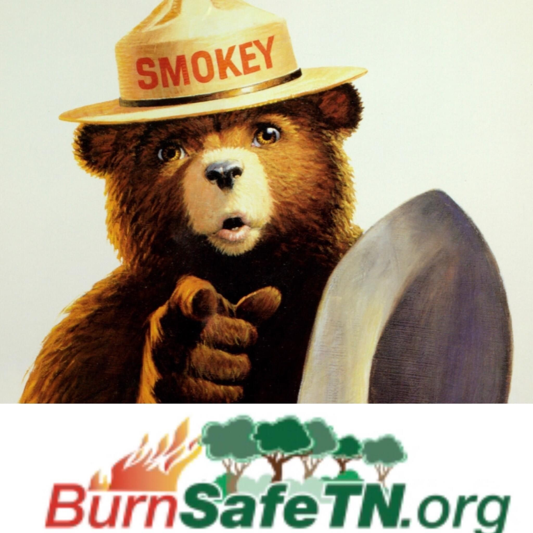 Smokey the Bear ad for burnsafetn.org on safe burning practices and burn permits